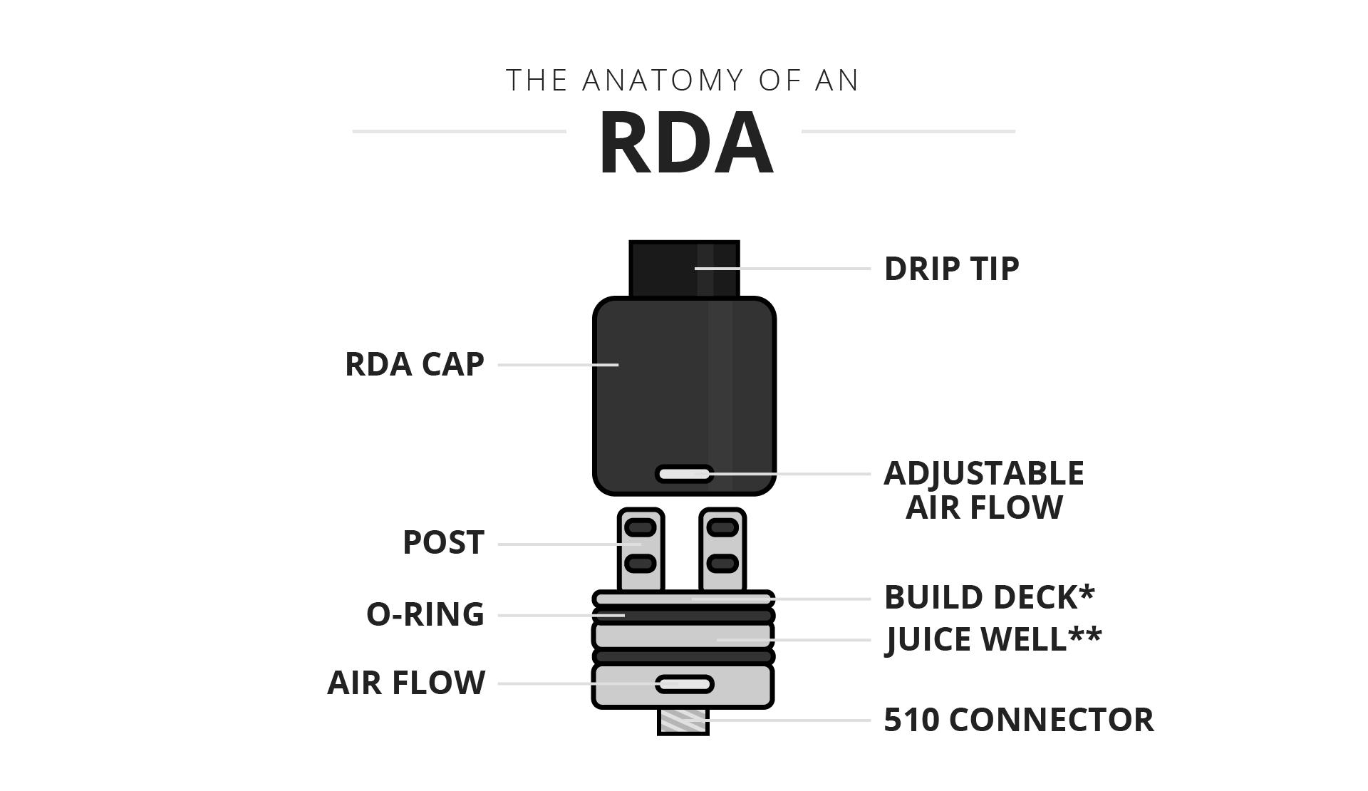 Anatomy RDA